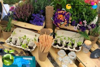 EKO mały ogrodnik - warsztaty ekologiczne - atrakcje ekologiczne - sadzenie roślinek